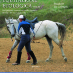 Equitazione Etologica Vol. II: Dal Puledro neonato al cavallo montato. Doma + esercizi in sella