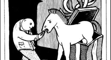 Il mondo equestre e i suoi proverbi – scopri il libro di Parmeggiani