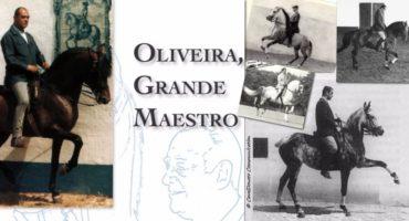 L'opera di Nuno Oliveira è a tutt'oggi insistentemente richiesta: scopri!
