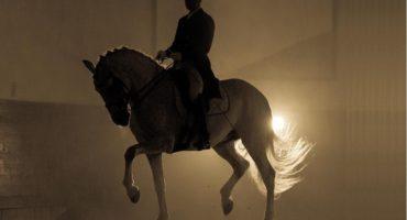 Posata/levata, appoggio/sospensione, impulso/propulsione del cavallo: con Pierre Chambry