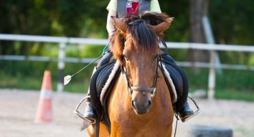 Alla scoperta del valore unico dell'equitazione con Rita Andruetto